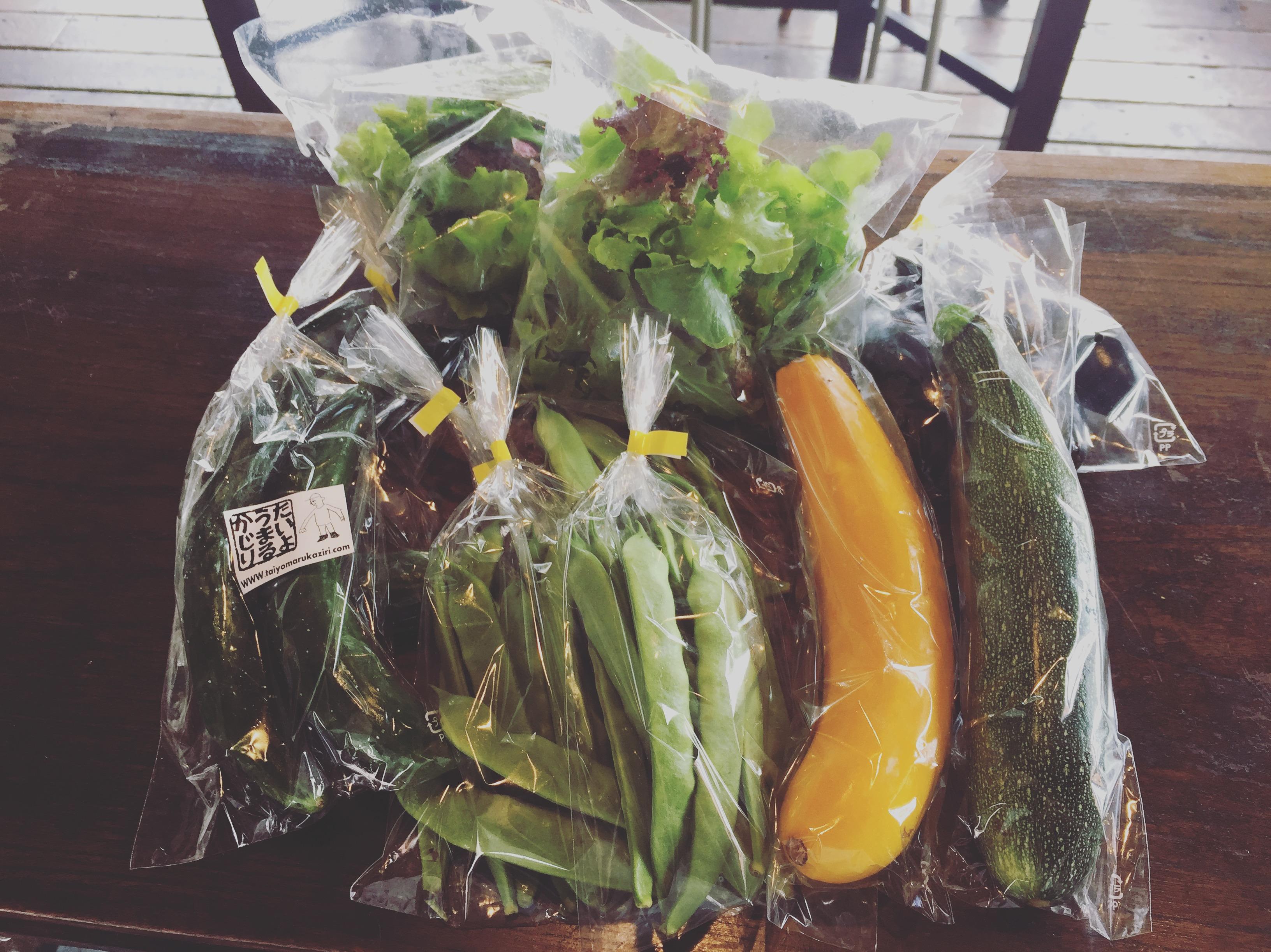 夏野菜の魅力