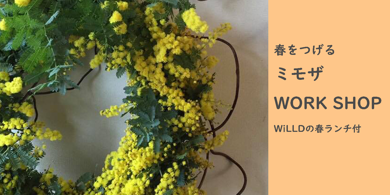 WiLLDランチ付イベント♪『春をつげるミモザWORK SHOP』